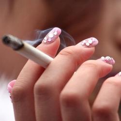 merokok harus mempunyai lisensi atau kartu lisensi